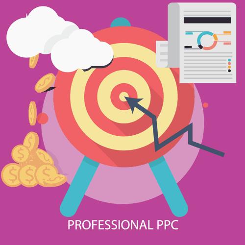 Professional Pay per Click Services